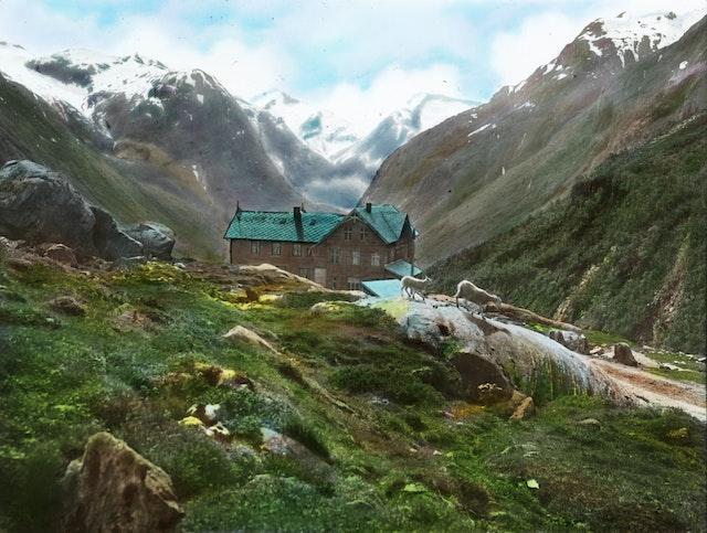 Hotel Videseter in Stryn