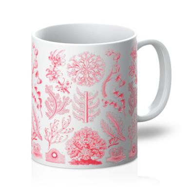Haeckel Floridae Mug
