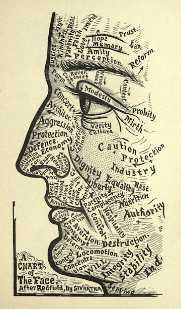 Chart of the Face
