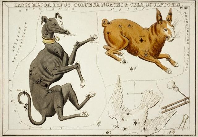Canis Major, Lepus, Columba Noachi and the Cela Sculptoris