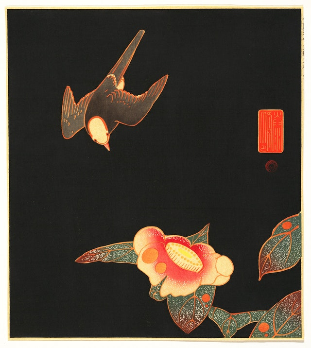 Swallow and Camellia