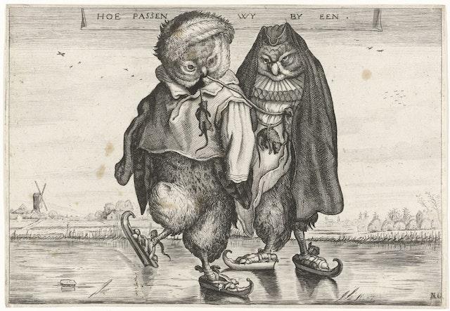 Skating Owls