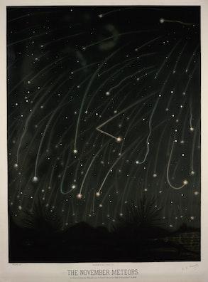 The November Meteors