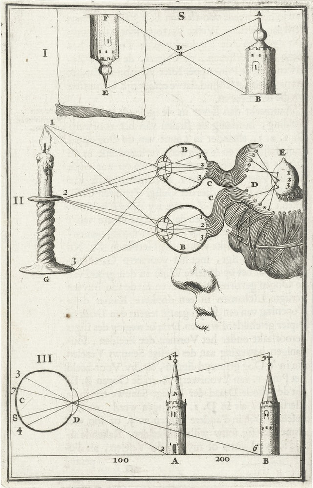 The Functioning of the Eye