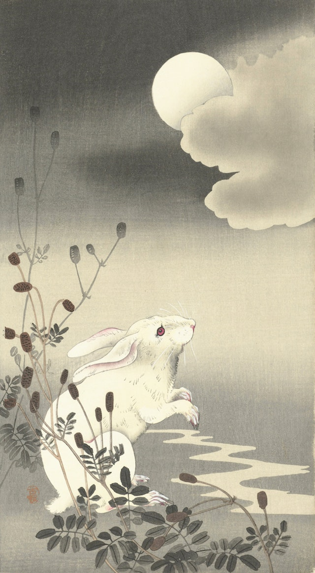 Full Moon with White Rabbit