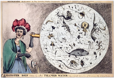 Monster Soup Commonly Called Thames water