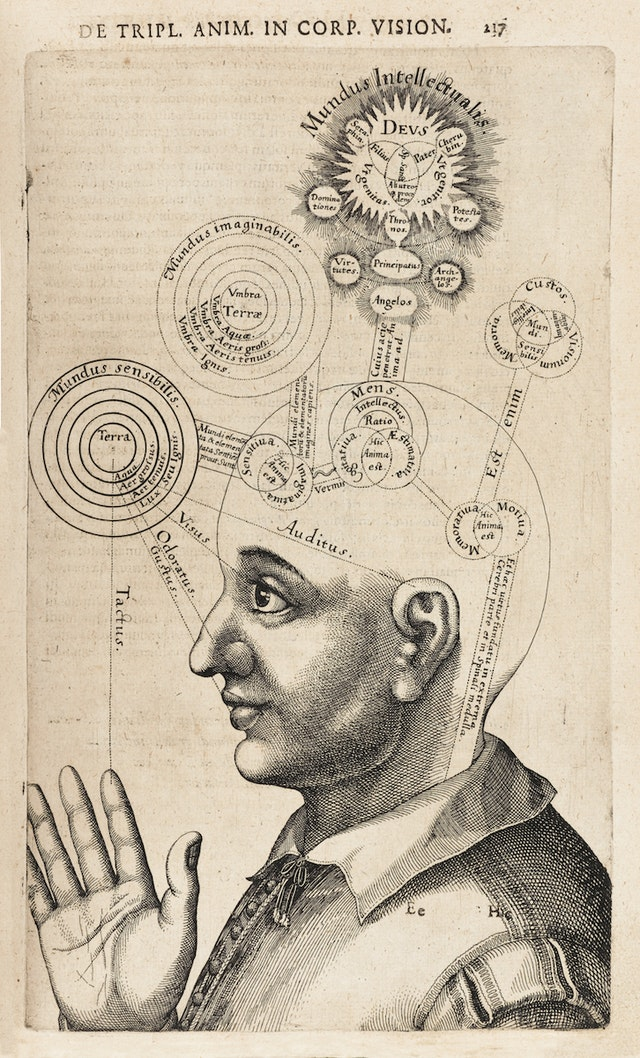 Diagram of the Human Mind