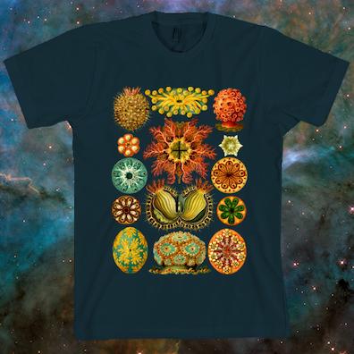 Haeckel Ascidiacea T-Shirt