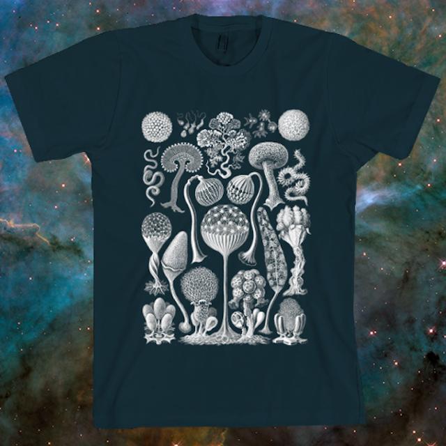 Haeckel Mycetoza T-Shirt